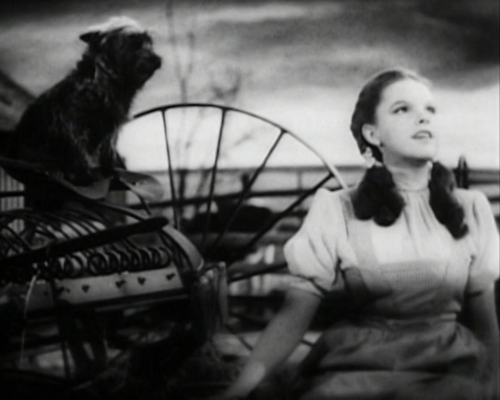 Toto and Dorothy from 'The Wizard of Oz'