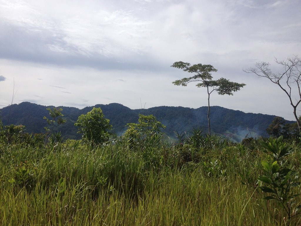 Motorbike through pristine jungle