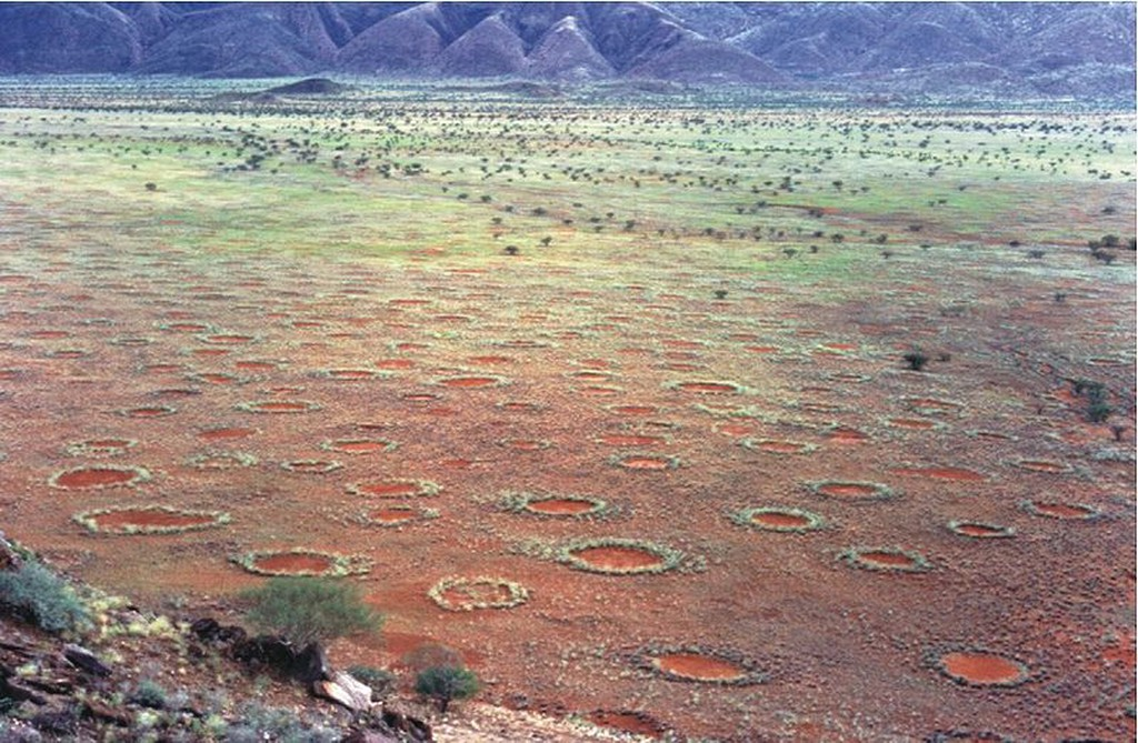 The legendary fairy circles of Namibia