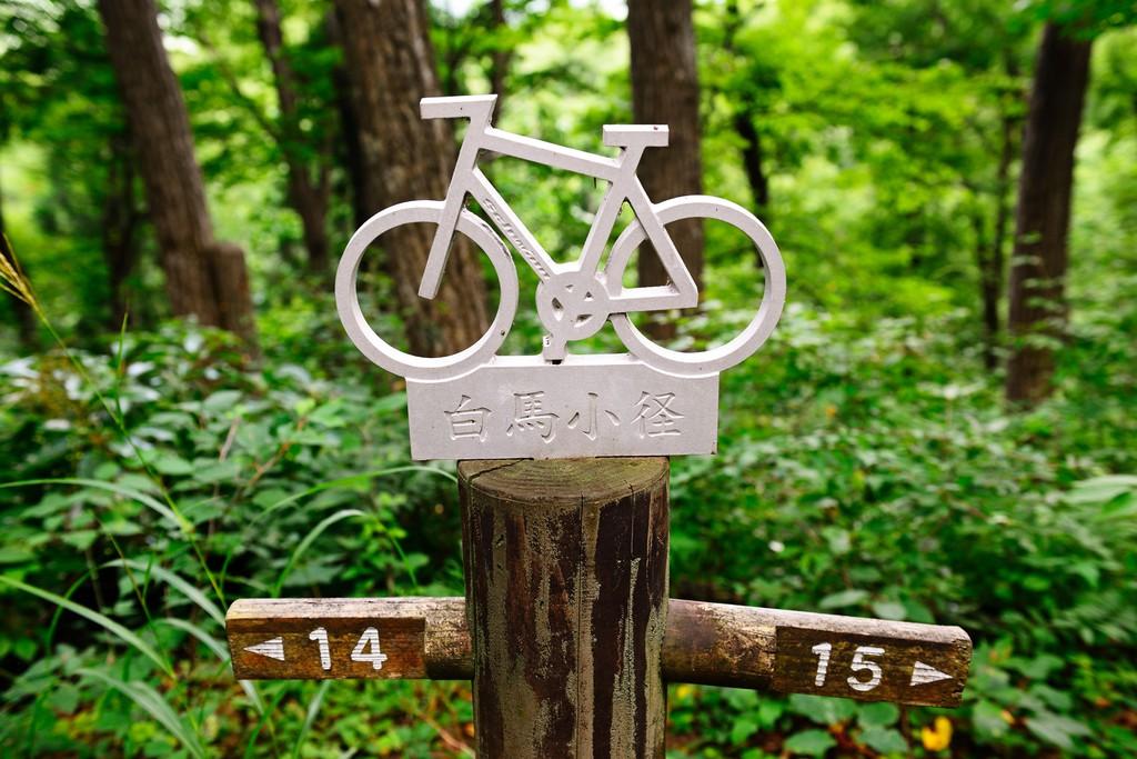 Sign for cyclists, mountain bikers on the way, Hakuba, Japanese Alps, Japan