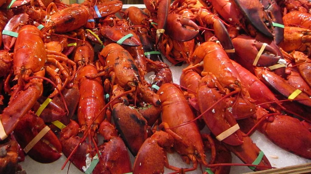 Pile of lobsters | © Chloe Media/Flickr