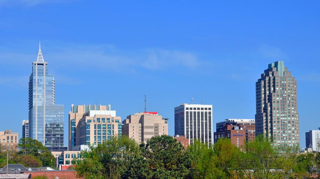 Raleigh, North Carolina ©  James Willamor