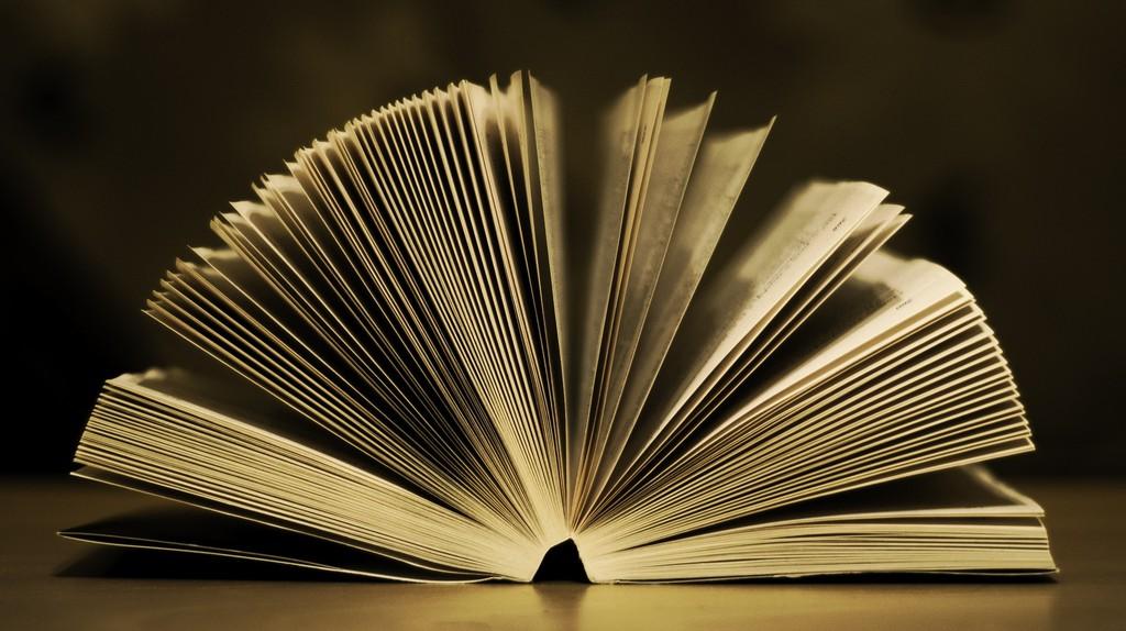 Open Book | © tookapic/Pixabay