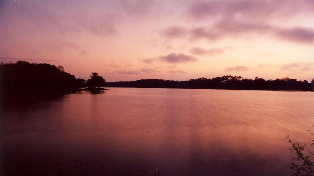 Taylor Park, Largo | © Mikereichold / WikiCommons