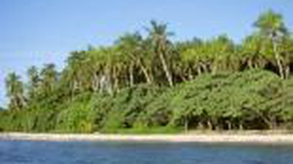 French or Polynesian: The Curious Case of Wallis and Futuna