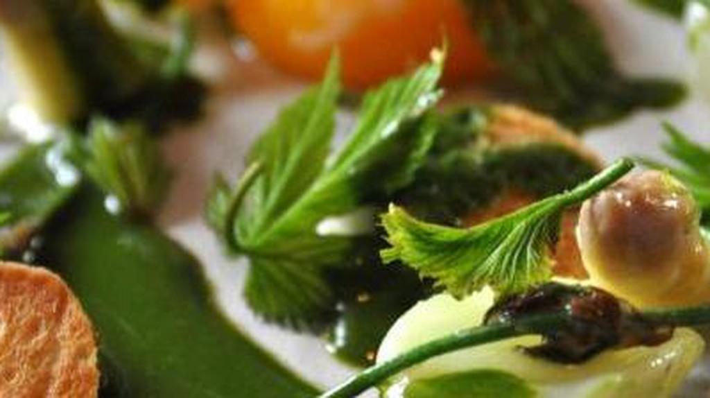Noma's Reinvention Of Danish Cuisine