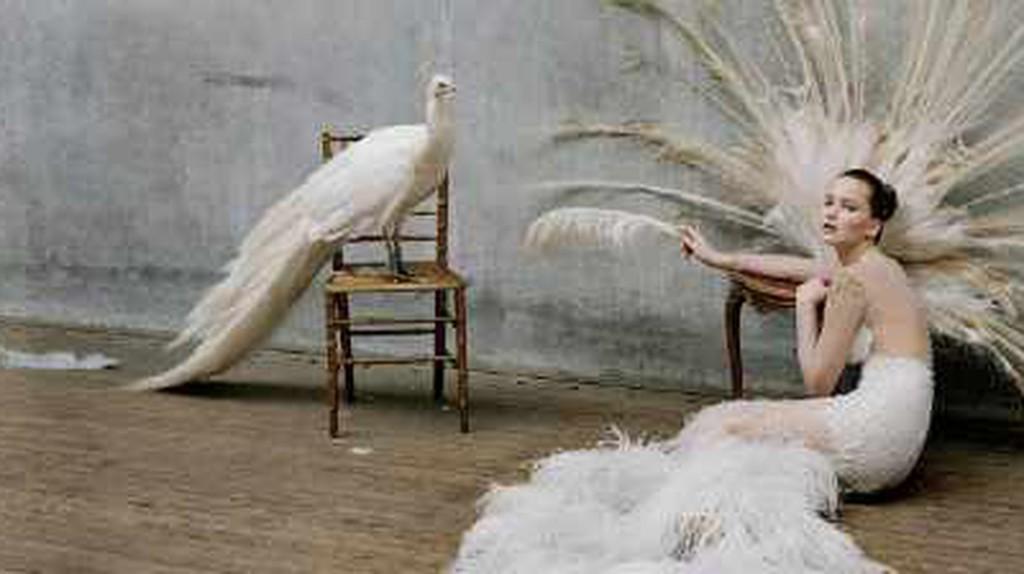 Tim Walker: The Fashion Photographer Who Makes Magic
