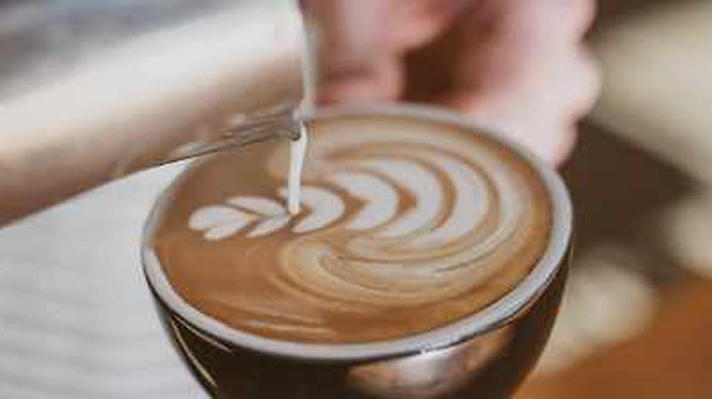 The 10 Best Cafés In Wellington, New Zealand