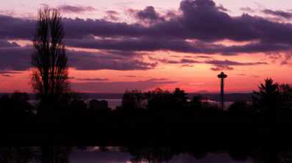 10 Things to See and Do in Capitol Hill, Seattle