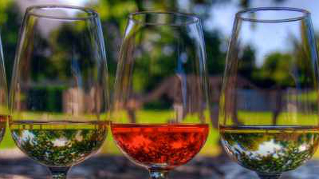 The Best Wineries And Breweries In Tucson