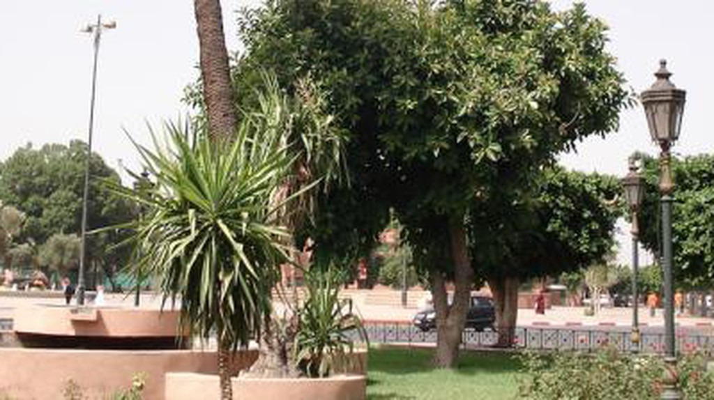 Top 10 Things To See And Do In Gueliz, Marrakech