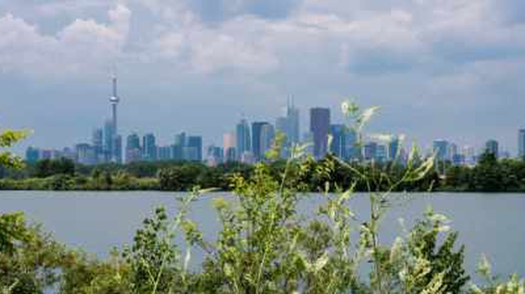 Travel Like A Local: Toronto By Bike