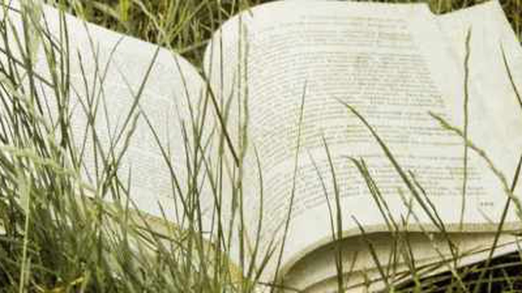 13 Books To Read On A Summer's Day