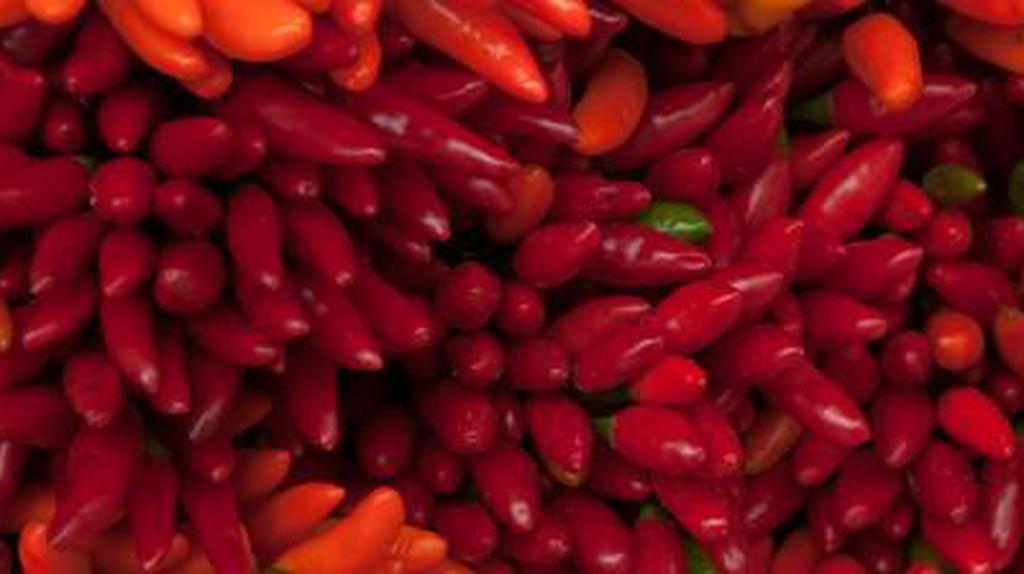 The Best Restaurants In Chueca, Spain