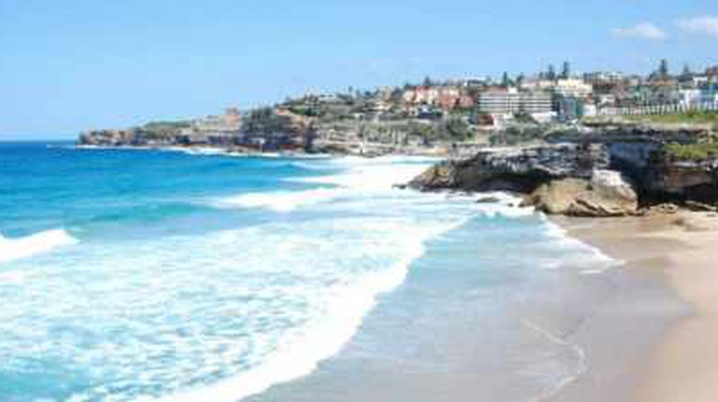 The Best Places For Brunch In Tamarama, Sydney