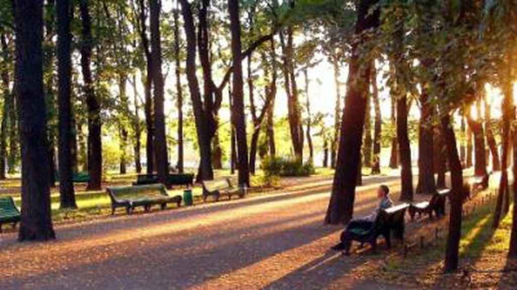 The Most Amazing Parks in St Petersburg