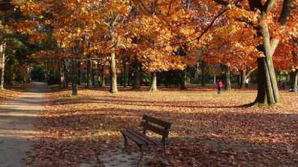 The Best Parks In Lyon You Should Visit