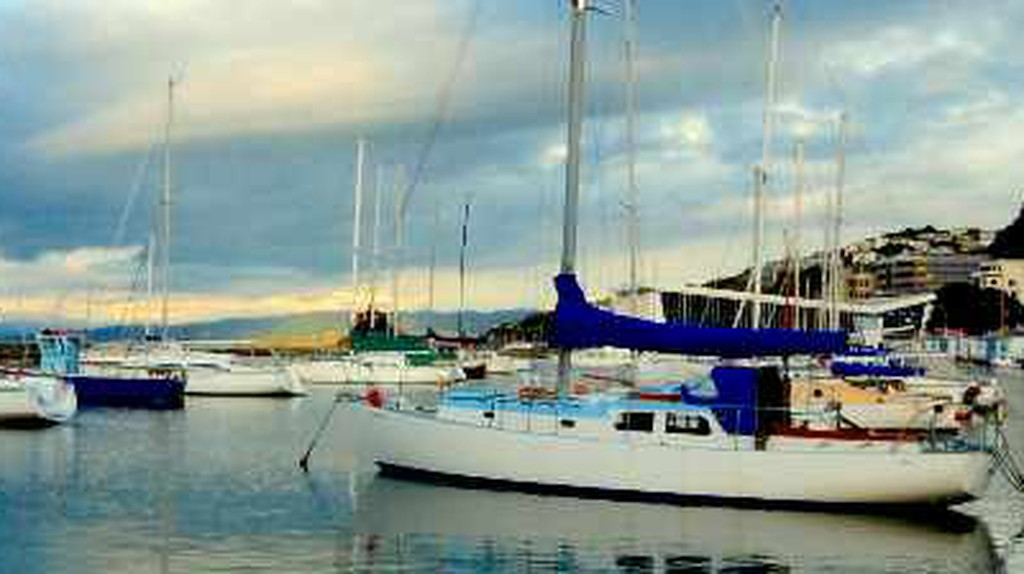The Top Seafood Spots In Wellington, New Zealand