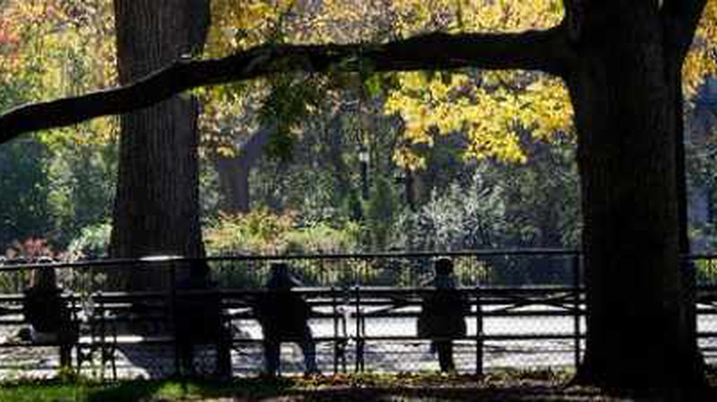 The Top 10 Things To Do And See In Alphabet City