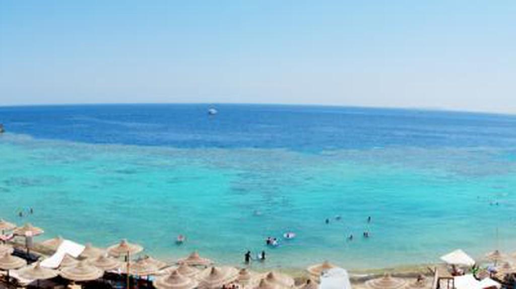 The Best Beach Restaurants And Bars In Sharm El Sheikh, Egypt