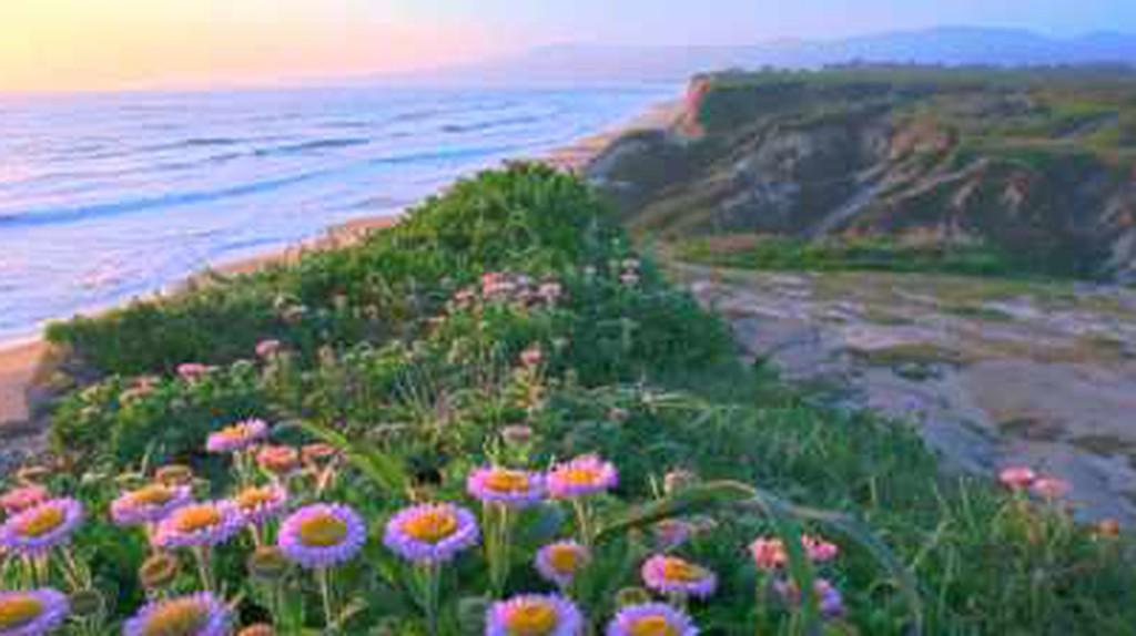 The Ultimate Weekend Road Trip: San Francisco To Big Sur
