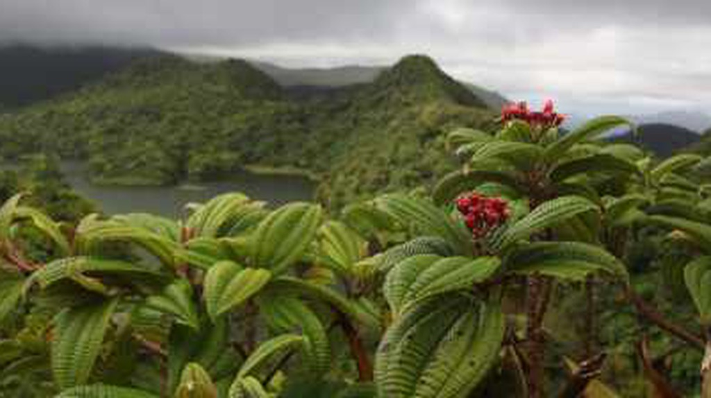 10 Most Beautiful Places In Dominica