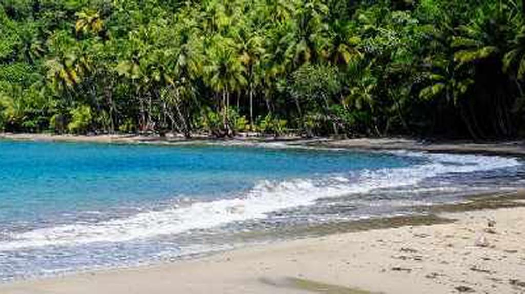 Beaches in Dominica You Will Love