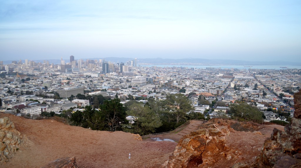 The Best Places To Find Nature Within San Francisco