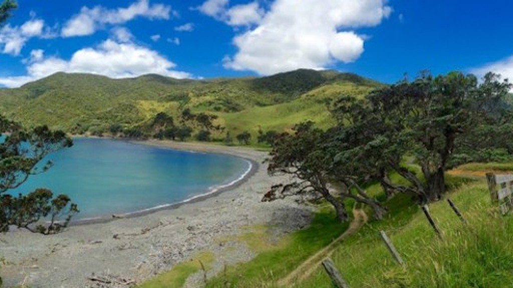 Top 10 Things To Do And See On The Coromandel Peninsula