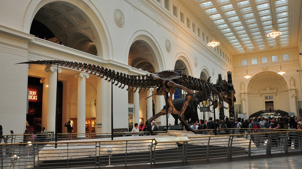 Sue the T-Rex | © Stephen Hanafin/Flickr