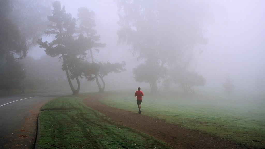 Golden Gate Park   © Michael Fraley/Flickr
