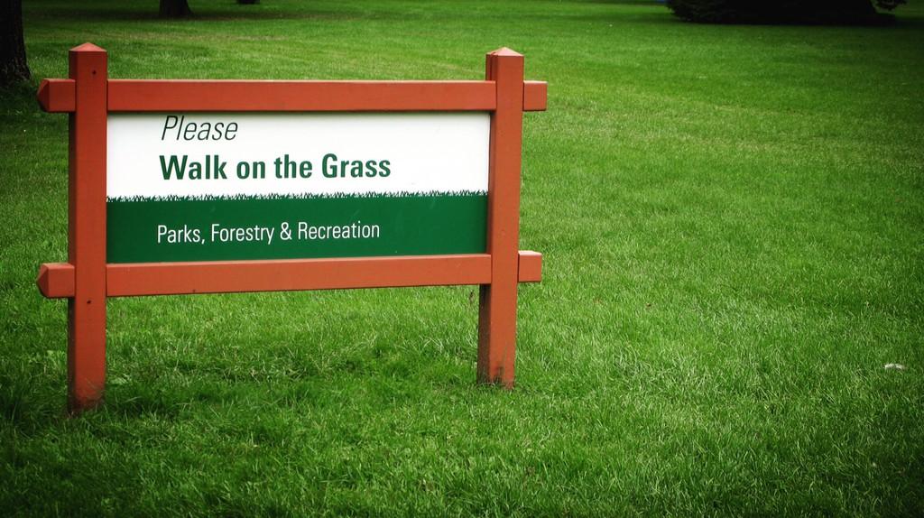 Please walk on the grass | Nicole Egan