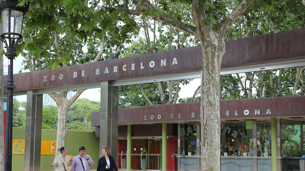 The History Of Barcelona Zoo In 1 Minute