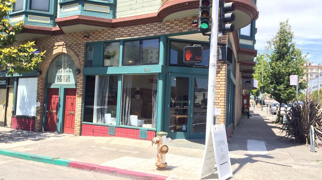 Cat Town Cafe courtesy of Allen Mark Aranas