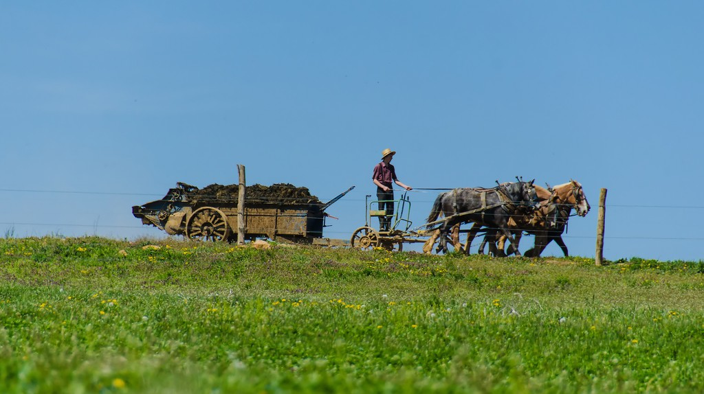 Amish Farming © likeaduck/ Flickr