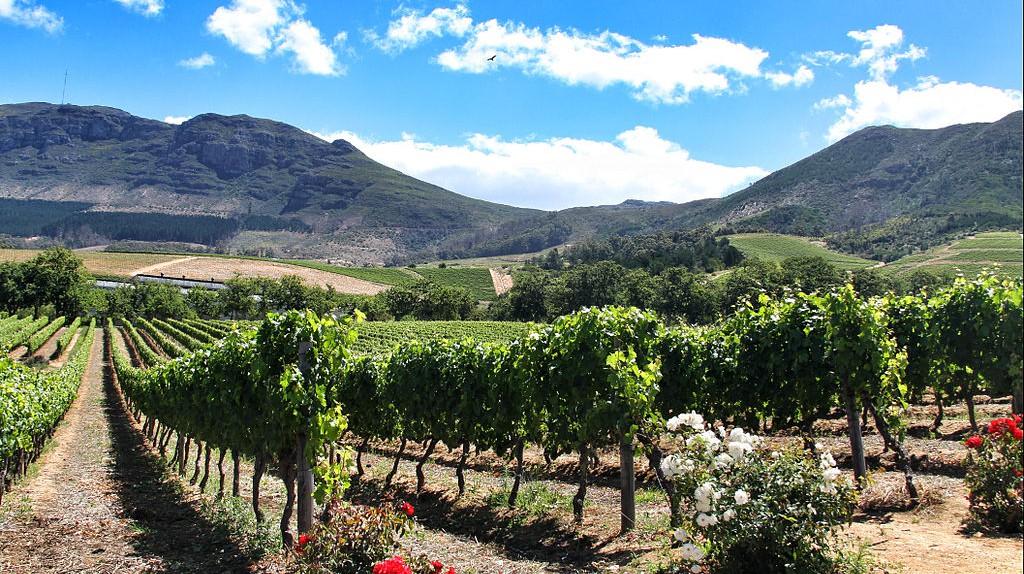 Groot Constantia Wine Estate © Michael Fu/WikiCommons