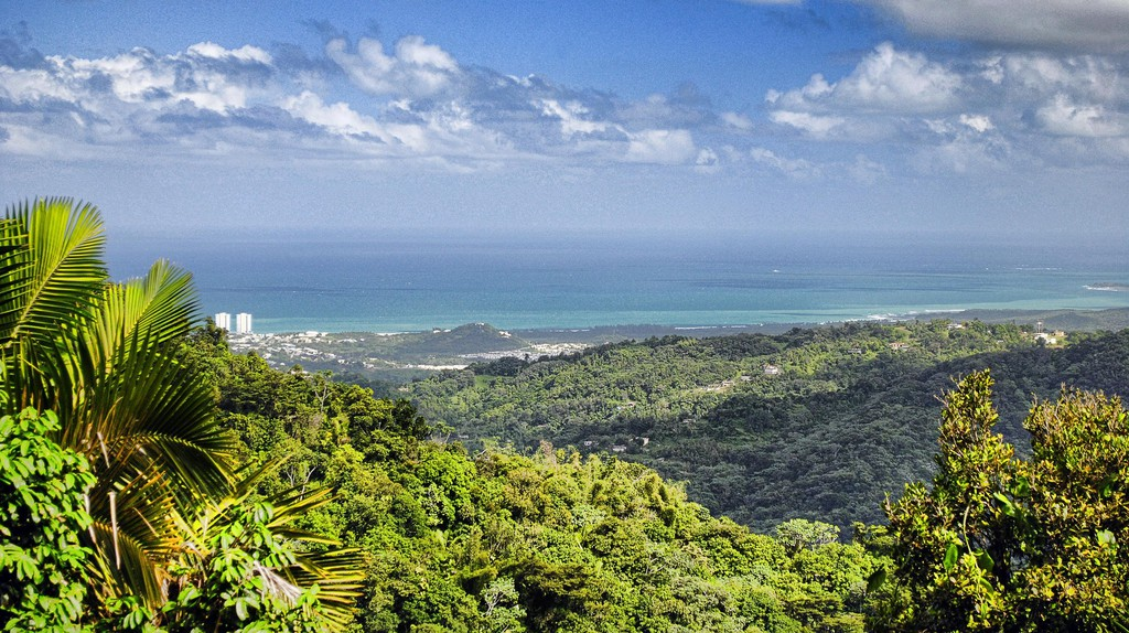 Puerto Rico | © Trish Hartmann/Flickr