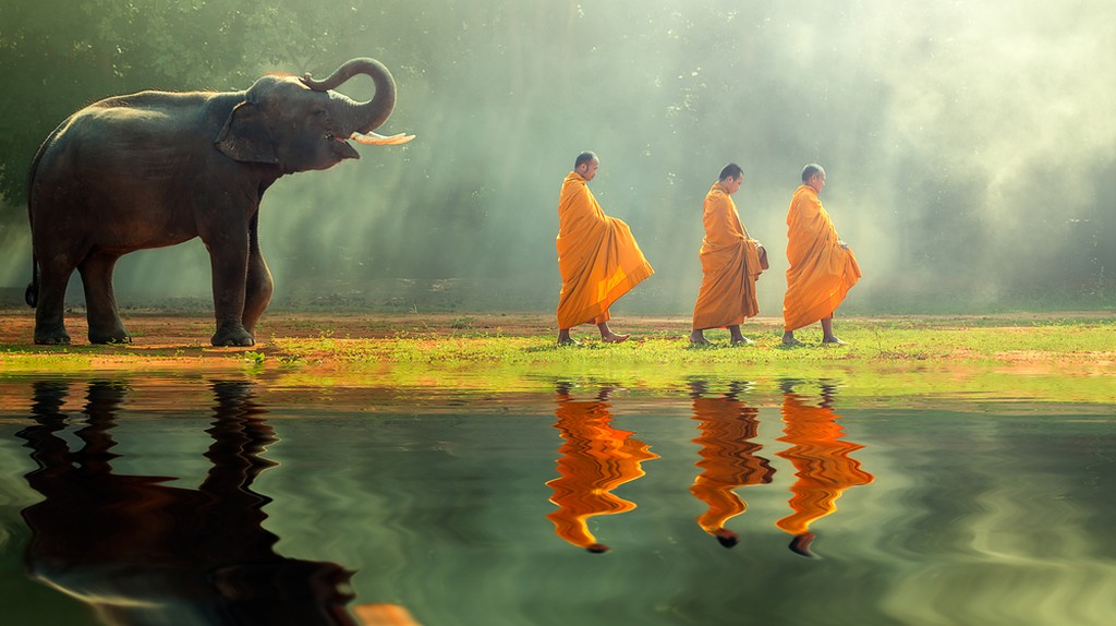 Young elephant with Monk alms round ©SantiPhotoSS / Shutterstock