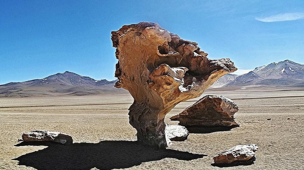 The stone tree   © capobleu2a/pixabay