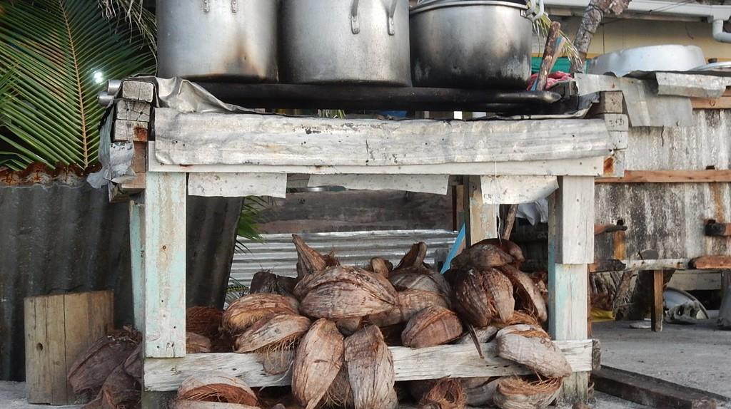 Coconut fuel  © Michael Coghlan/ Flickr