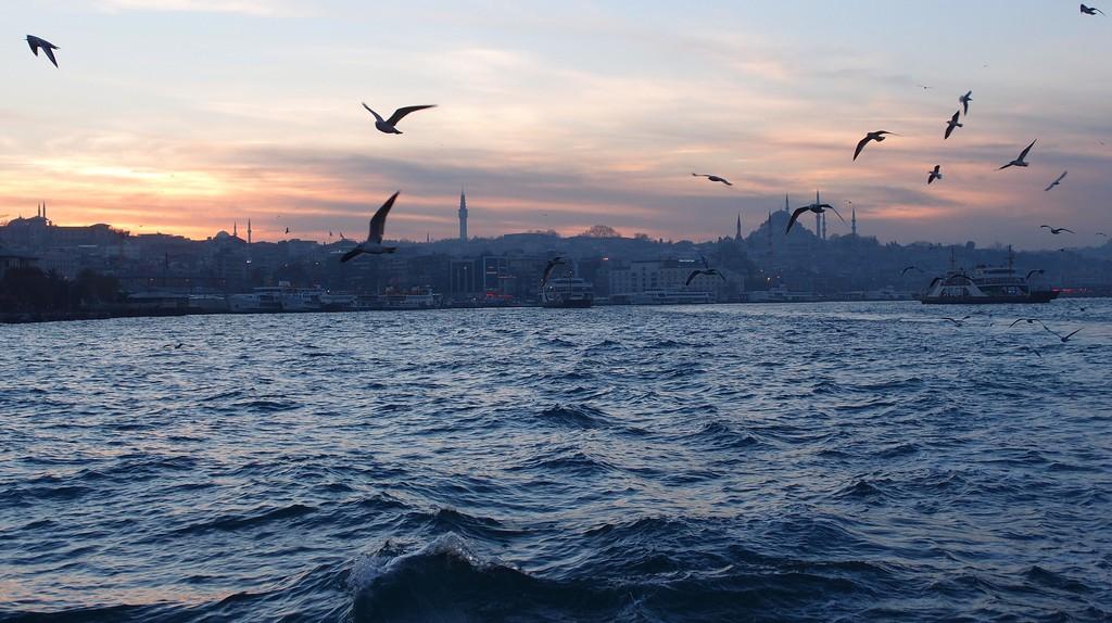 Bosphorus Cruise   © Guilhem Vellut/Flickr