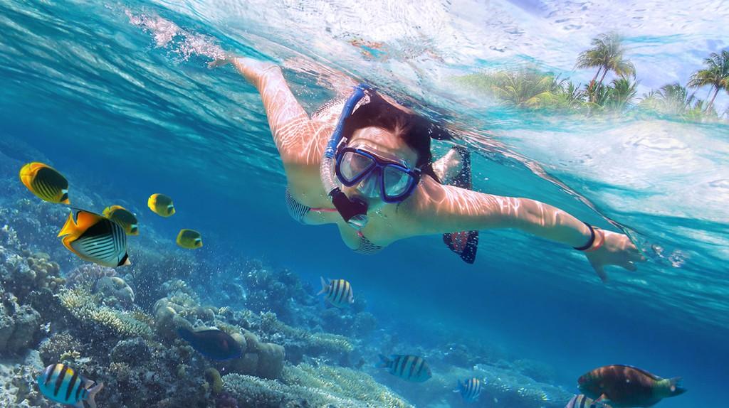 Snorkeling in Thailand   © Patryk Kosmider / Shutterstock
