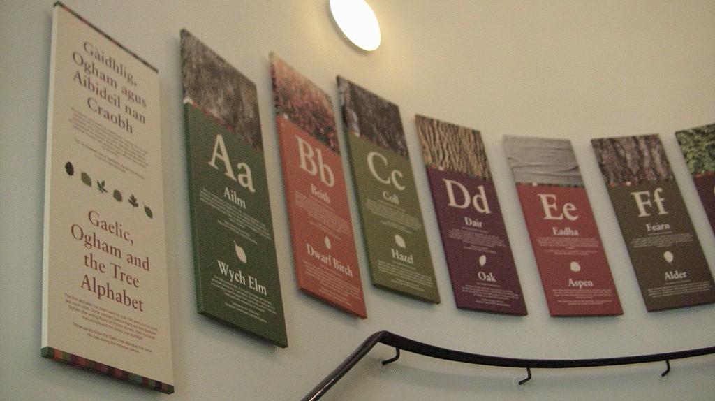 Gaelic Tree Alphabet Display   © Wendy/Flickr