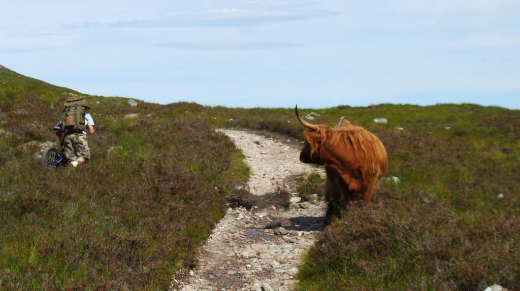 Blocked Path... | © Garry Burns/Flickr