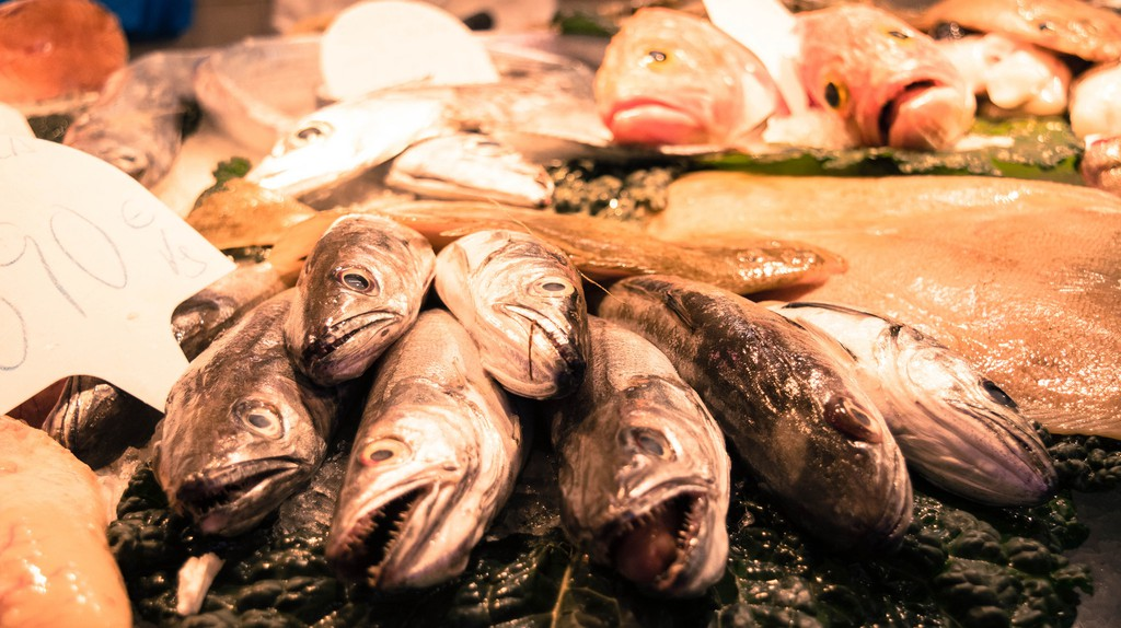 Fresh fish at the Boqueria Market | © andresumida / Flickr