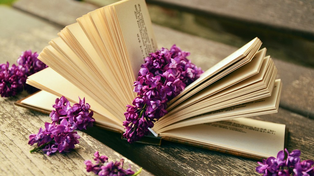 Spring in is the air, and with it a host of fresh new books to read | © congerdesign / Pixabay