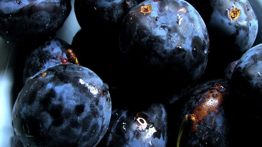 Ripe plums | © Hiltrud Möller-Eberth/ Flickr