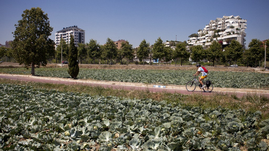 Cycling through the agricultural gardens around Valencia | Photo courtesy of Valencia Tourism