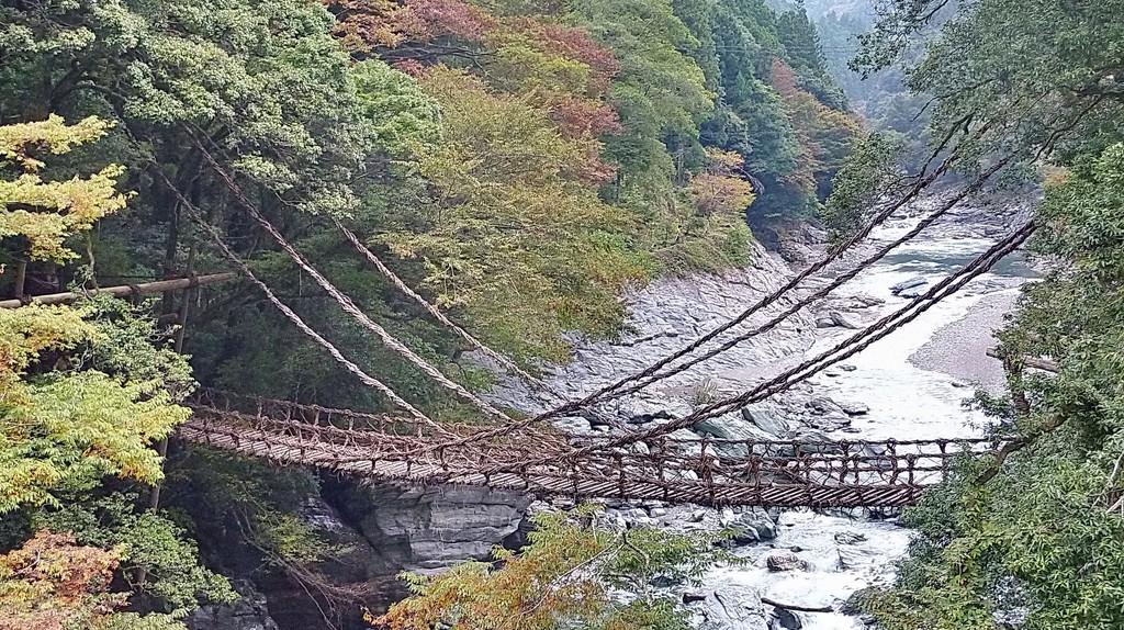 Iya Valley Living Bridges  © Travel-Picture Flickr