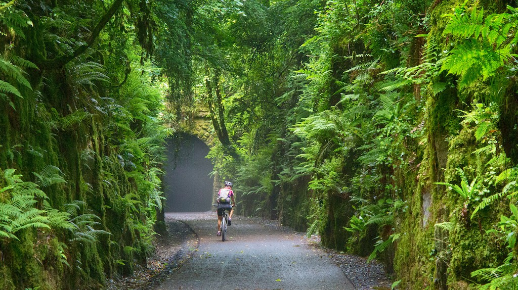 Cyclist on the Waterford Greenway, the longestoff-road walking and cycling experience in Ireland | © Patrick Browne / Courtesy of Visit Waterford